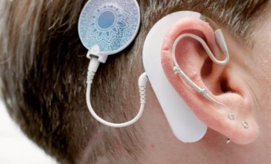 Les mécanismes de l'audition : une ouïe très fine