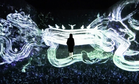 teamLab, Crows are chased and the chasing crows are destined to be chased as well, Transcending space © teamLab
